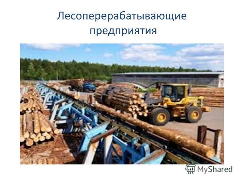 Лесоперерабатывающие предприятия