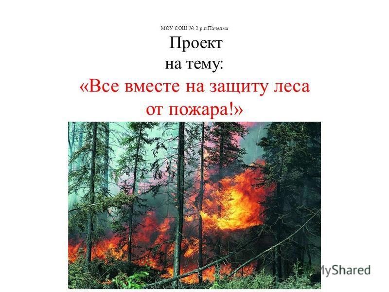 МОУ СОШ 2 р.п.Пачелма Проект на тему: «Все вместе на защиту леса от пожара!»