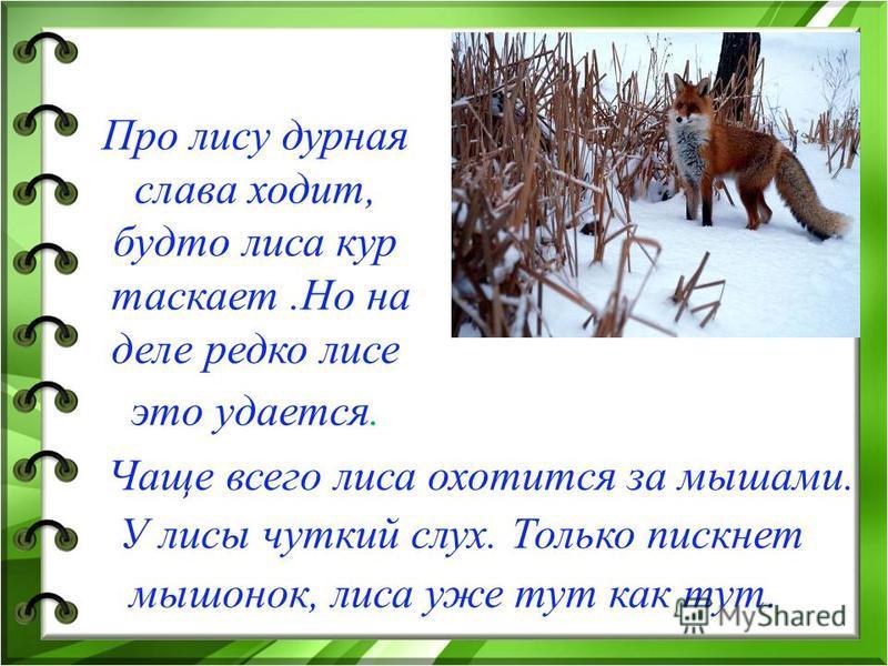 Животные бывают дикими и домашними. Они питаются зерном, сеном, молоком, овощами. У них могут выводиться детёныши в любое время года.