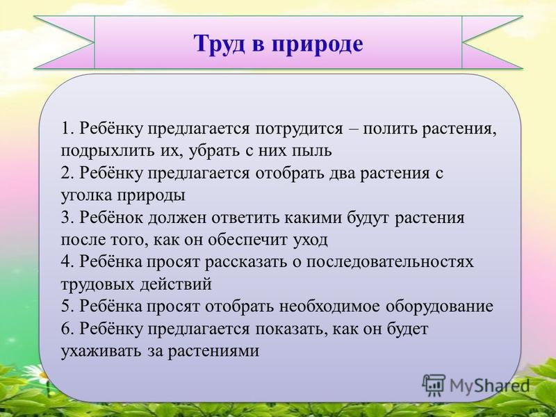 Труд в природе 1. Ребёнку предлагается потрудится – полить растения, подрыхлить их, убрать с них пыль 2. Ребёнку предлагается отобрать два растения с уголка природы 3. Ребёнок должен ответить какими будут растения после того, как он обеспечит уход 4.