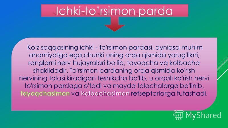 Ichki-torsimon parda