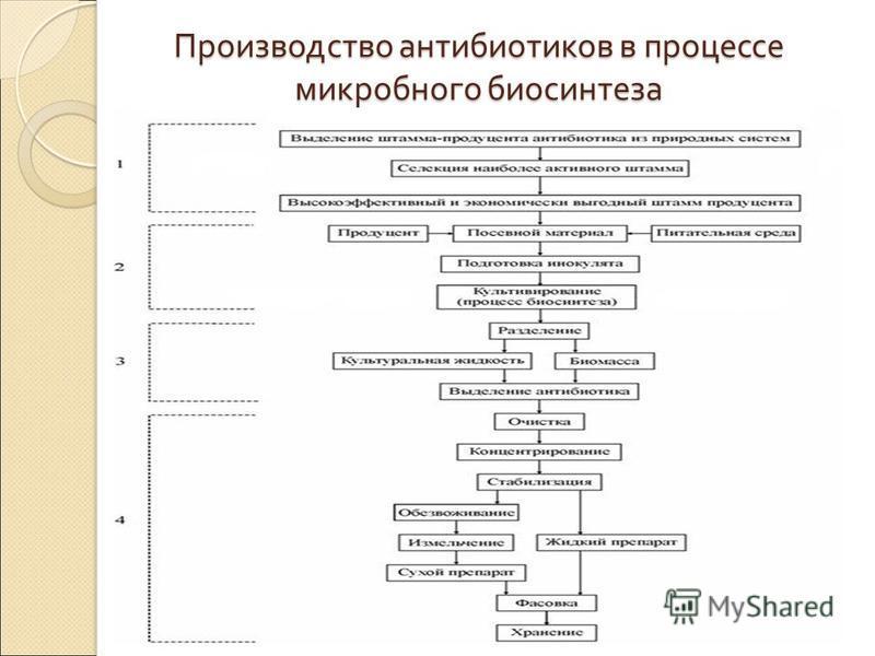 Производство антибиотиков в процессе микробного биосинтеза