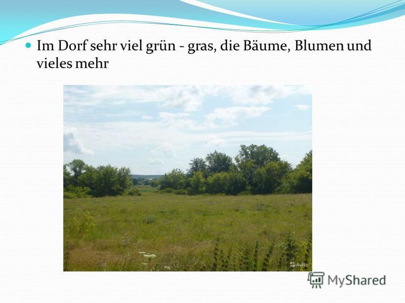 Im Dorf sehr viel grün - gras, die Bäume, Blumen und vieles mehr