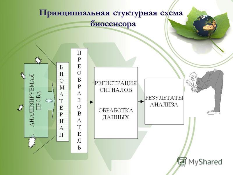 Принципиальная структурная схема биосенсора биосенсора