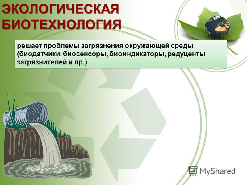 ЭКОЛОГИЧЕСКАЯ БИОТЕХНОЛОГИЯ решает проблемы загрязнения окружающей среды (биодатчики, биосенсоры, биоиндикаторы, редуценты загрязнителей и пр.)