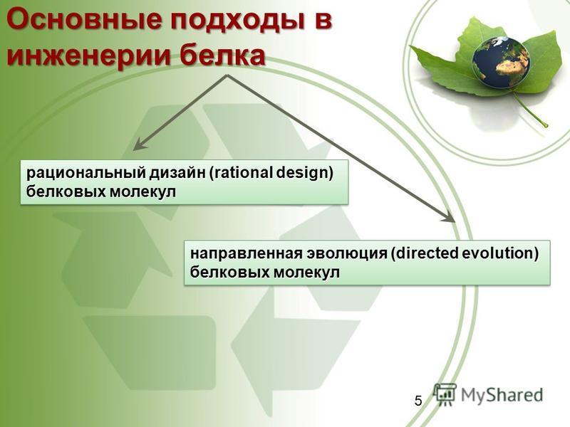 5 Основные подходы в инженерии белка рациональный дизайн (rational design) белковых молекул направленная эволюция (directed evolution) белковых молекул
