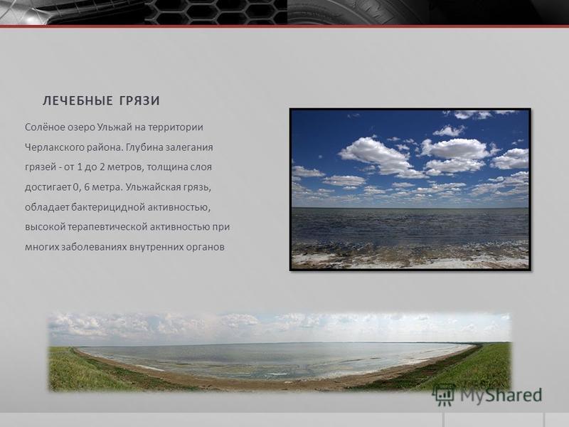 ЛЕЧЕБНЫЕ ГРЯЗИ Солёное озеро Ульжай на территории Черлакского района. Глубина залегания грязей - от 1 до 2 метров, толщина слоя достигает 0, 6 метра. Ульжайская грязь, обладает бактерицидной активностью, высокой терапевтической активностью при многих