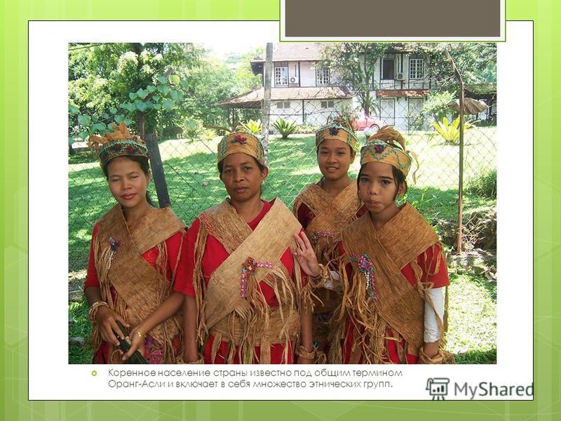 Коренное население страны известно под общим термином Оранг-Асли и включает в себя множество этнических групп.