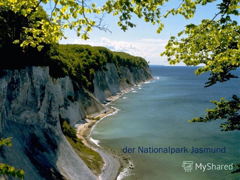 der Nationalpark Jasmund
