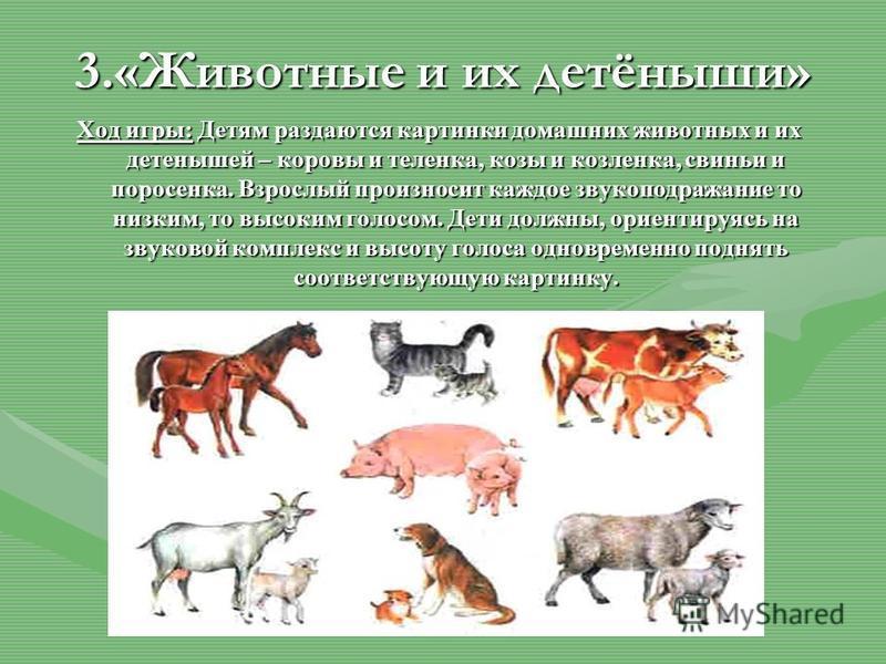 3.«Животные и их детёныши» Ход игры: Детям раздаются картинки домашних животных и их детенышей – коровы и теленка, козы и козленка, свиньи и поросенка. Взрослый произносит каждое звукоподражание то низким, то высоким голосом. Дети должны, ориентируяс
