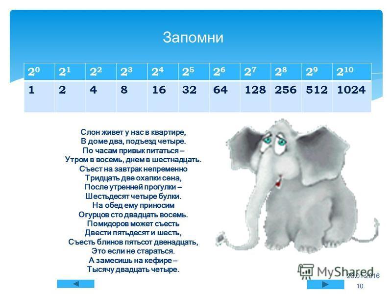 Слон живет у нас в квартире, В доме два, подъезд четыре. По часам привык питаться – Утром в восемь, днем в шестнадцать. Съест на завтрак непременно Тридцать две охапки сена, После утренней прогулки – Шестьдесят четыре булки. На обед ему приносим Огур