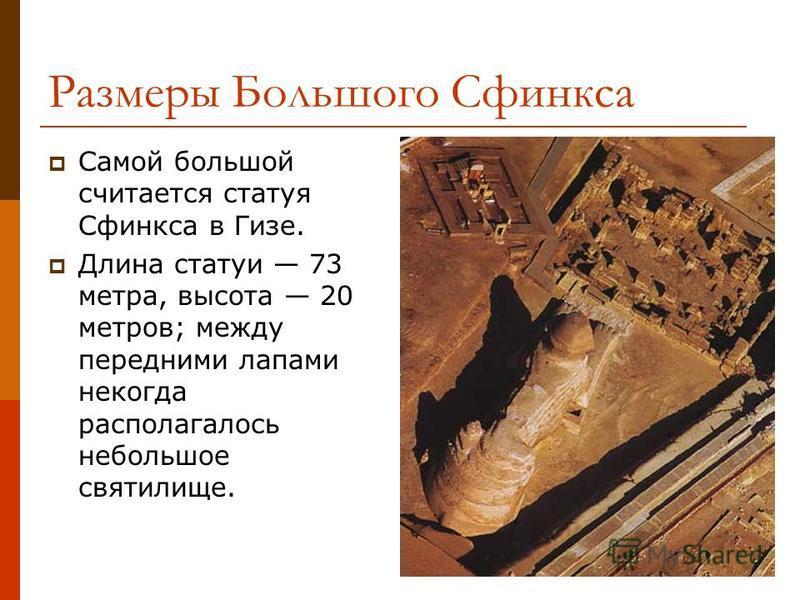 Размеры Большого Сфинкса Самой большой считается статуя Сфинкса в Гизе. Длина статуи 73 метра, высота 20 метров; между передними лапами некогда располагалось небольшое святилище.