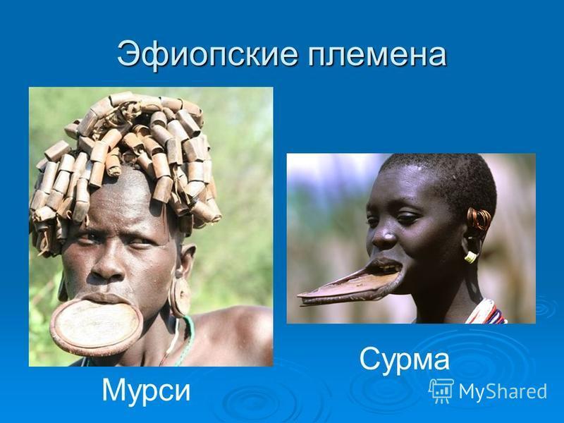 Эфиопские племена Сурма Мурси