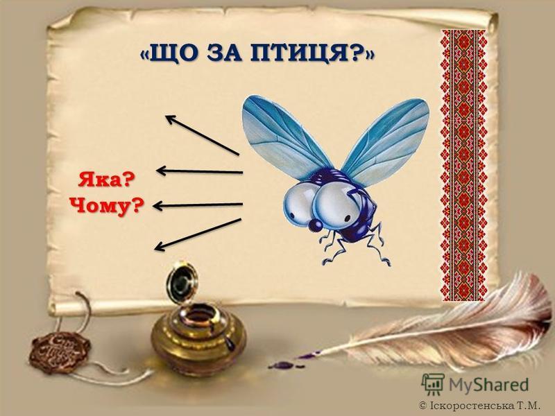 «ЩО ЗА ПТИЦЯ?» Яка?Чому? © Іскоростенська Т.М.