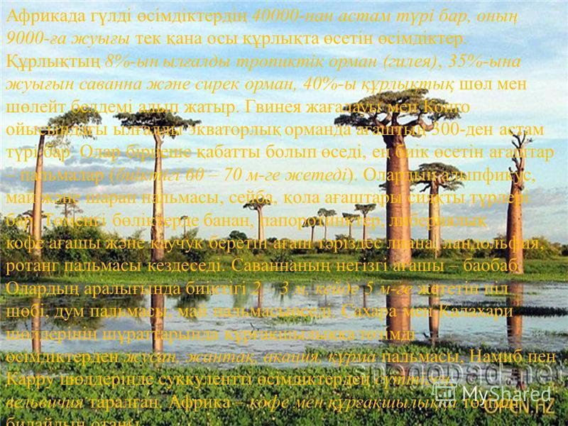Африкада гүлді өсімдіктердің 40000-нан астам түрі бар, оның 9000-ға жуығы тек қана осы құрлықта өсетін өсімдіктер. Құрлықтың 8%-ын ылғалды тропиктік орман (гилея), 35%-ына жуығын саванна және сирек орман, 40%-ы құрлықтық шөл мен шөлейт белдемі алып ж
