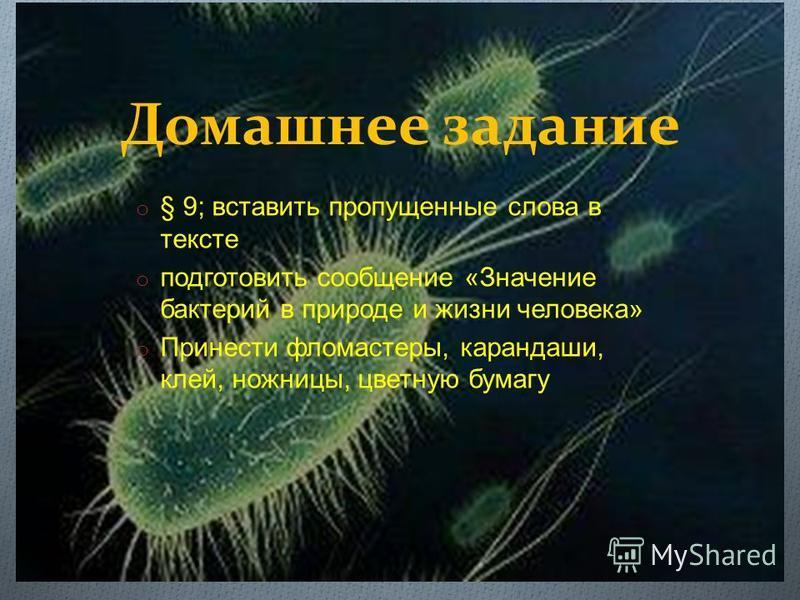 Домашнее задание o § 9; вставить пропущенные слова в тексте o подготовить сообщение « Значение бактерий в природе и жизни человека » o Принести фломастеры, карандаши, клей, ножницы, цветную бумагу
