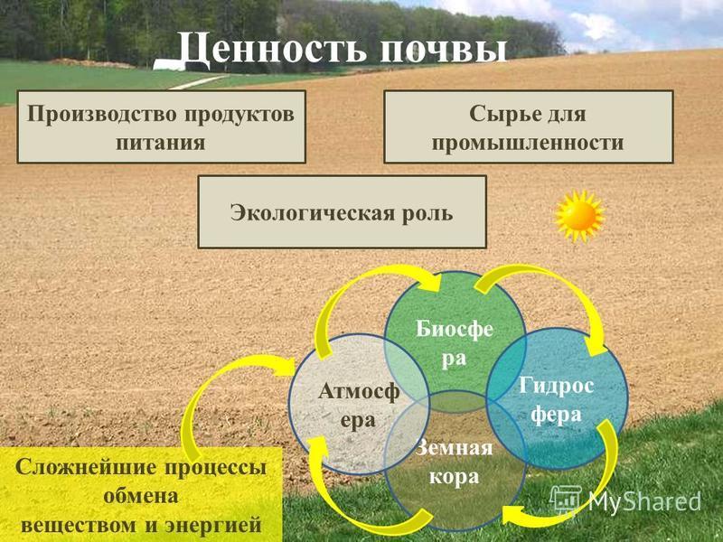 Ценность почвы Производство продуктов питания Сырье для промышленности Экологическая роль Биосфе ра Земная кора Гидрос фера Атмосф ера Сложнейшие процессы обмена веществом и энергией