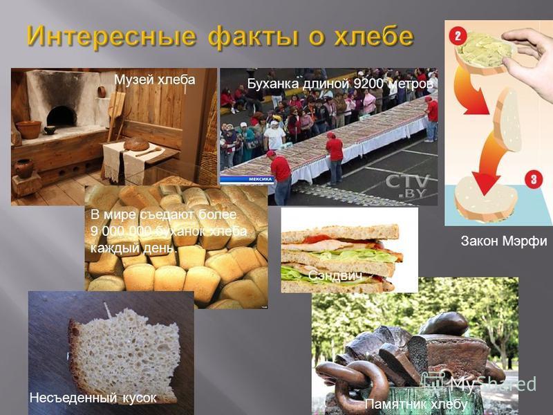 Музей хлеба Буханка длиной 9200 метров В мире съедают более 9 000 000 буханок хлеба каждый день. Закон Мэрфи Несъеденный кусок Сэндвич Памятник хлебу
