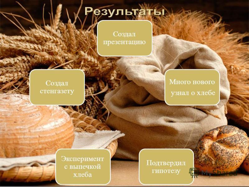 Создал презентацию Много нового узнал о хлебе Подтвердил гипотезу Эксперимент с выпечкой хлеба Создал стенгазету