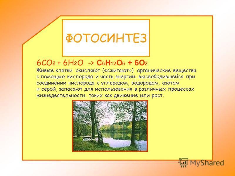 БРОЖЕНИЕ Брожение представляет особый химический процесс, вызываемый ферментами. C 6 H 12 O 6 -> 2C 2 H 5 OH + 2CO 2