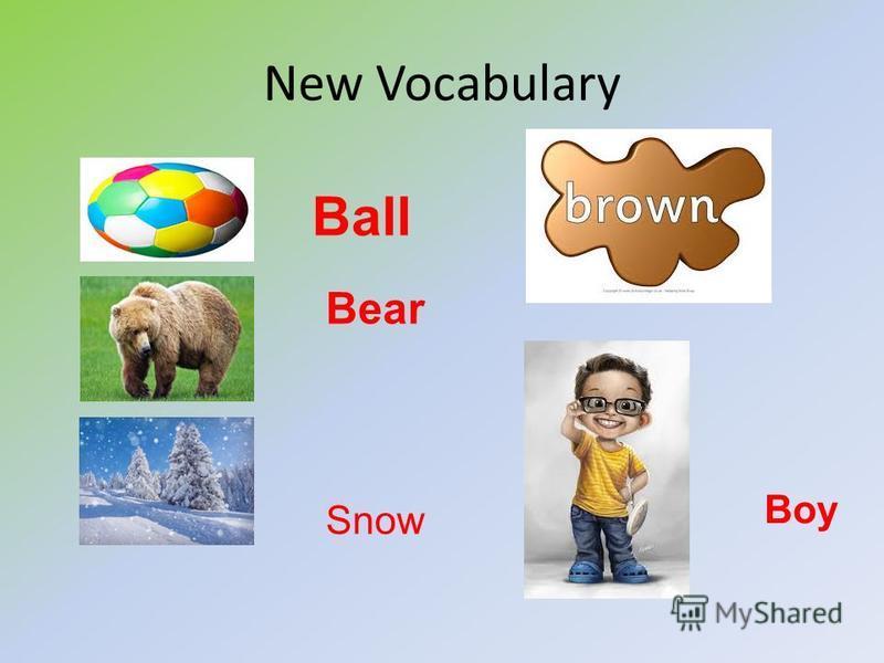 New Vocabulary Ball Bear Snow Boy