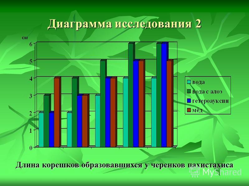 Диаграмма исследования 2 Длина корешков образовавшихся у черенков пахистахиса