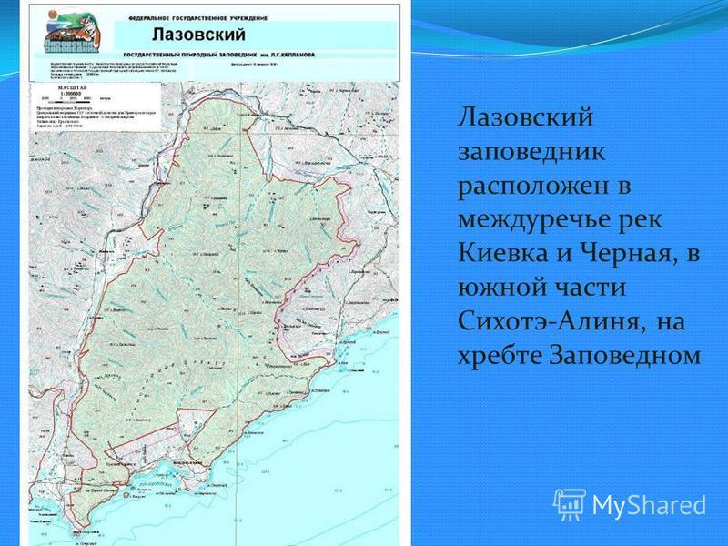 Лазовский заповедник расположен в междуречье рек Киевка и Черная, в южной части Сихотэ-Алиня, на хребте Заповедном