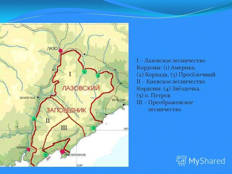 I – Лазовское лесничество Кордоны: (1) Америка, (2) Корпадь, (3) Просёлочный II – Киевское лесничество Кордоны: (4) Звёздочка, (5) о. Петров III – Преображенское лесничество