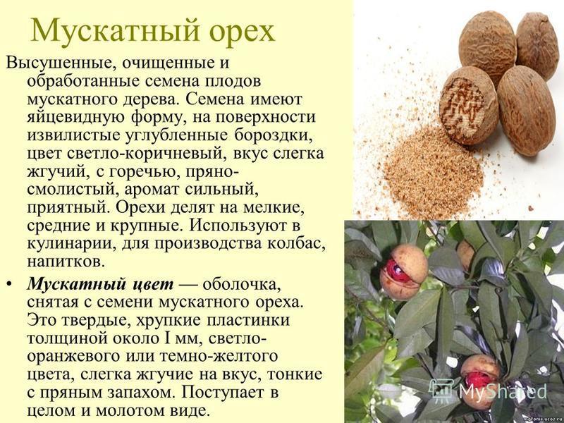 Мускатный орех Высушенные, очищенные и обработанные семена плодов мускатного дерева. Семена имеют яйцевидную форму, на поверхности извилистые углубленные бороздки, цвет светло-коричневый, вкус слегка жгучий, с горечью, пряно- смолистый, аромат сильны