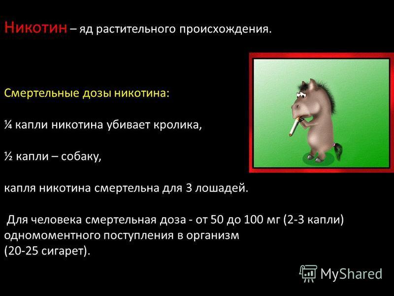 Никотин – яд растительного происхождения. Смертельные дозы никотина: ¼ капли никотина убивает кролика, ½ капли – собаку, капля никотина смертельна для 3 лошадей. Для человека смертельная доза - от 50 до 100 мг (2-3 капли) одномоментного поступления в