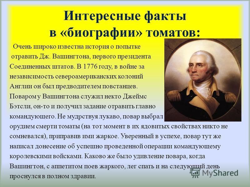 Интересные факты в «биографии» томатов: Очень широко известна история о попытке отравить Дж. Вашингтона, первого президента Соединенных штатов. В 1776 году, в войне за независимость североамериканских колоний Англии он был предводителем повстанцев. П