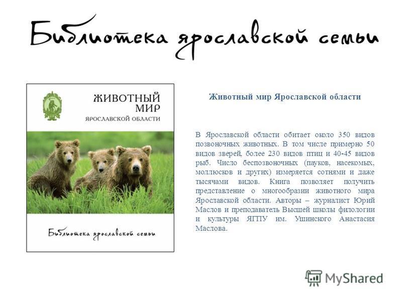 Животный мир Ярославской области В Ярославской области обитает около 350 видов позвоночных животных. В том числе примерно 50 видов зверей, более 230 видов птиц и 40-45 видов рыб. Число беспозвоночных (пауков, насекомых, моллюсков и других) измеряется