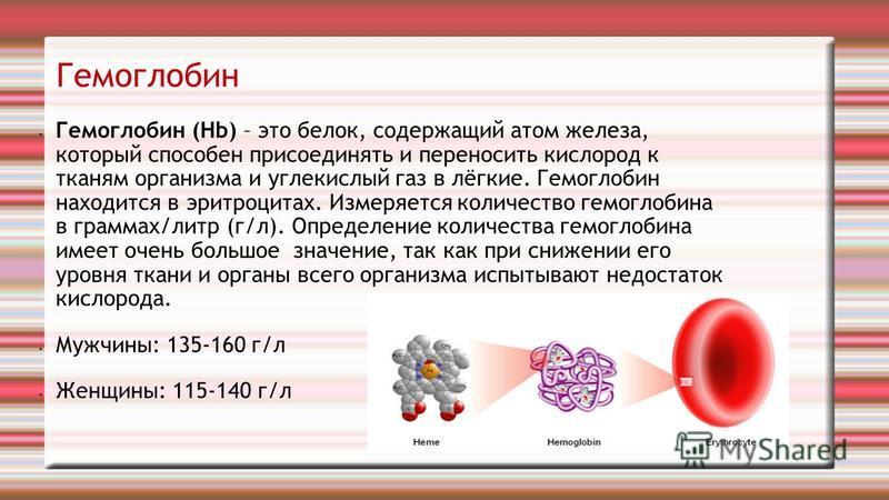 Гемоглобин Гемоглобин (Hb) – это белок, содержащий атом железа, который способен присоединять и переносить кислород к тканям организма и углекислый газ в лёгкие. Гемоглобин находится в эритроцитах. Измеряется количество гемоглобина в граммах/литр (г/