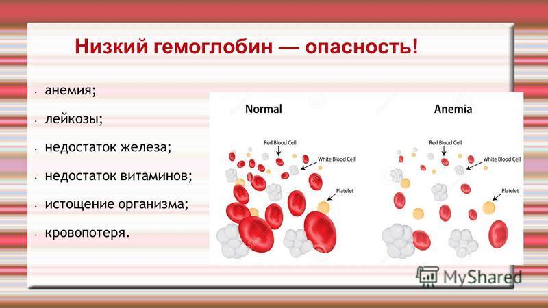 Почему гемоглобин низкий у беременной 20