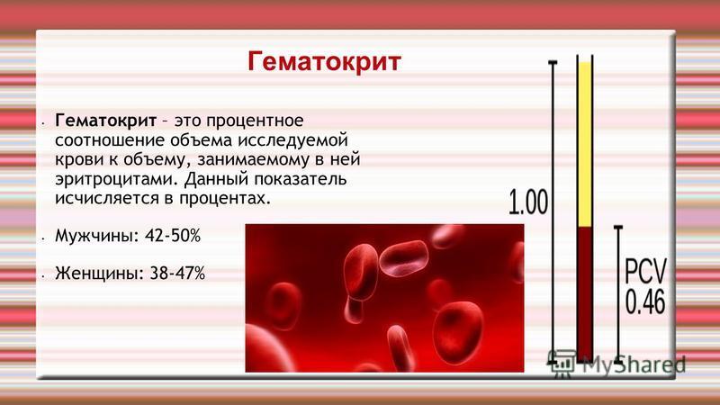Гематокрит Гематокрит – это процентное соотношение объема исследуемой крови к объему, занимаемому в ней эритроцитами. Данный показатель исчисляется в процентах. Мужчины: 42-50% Женщины: 38-47%