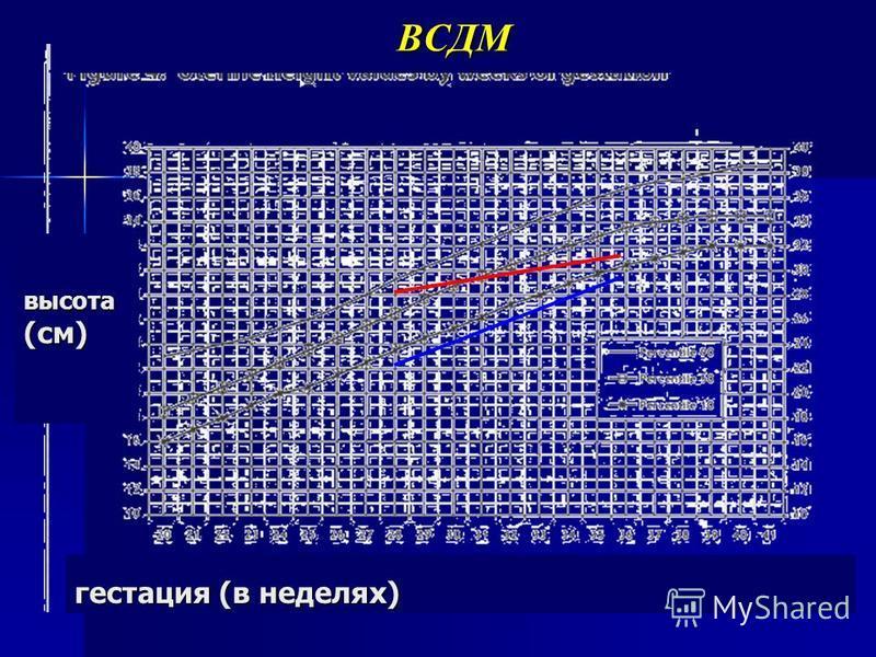 ВСДМ гестация (в неделях) высота (см)