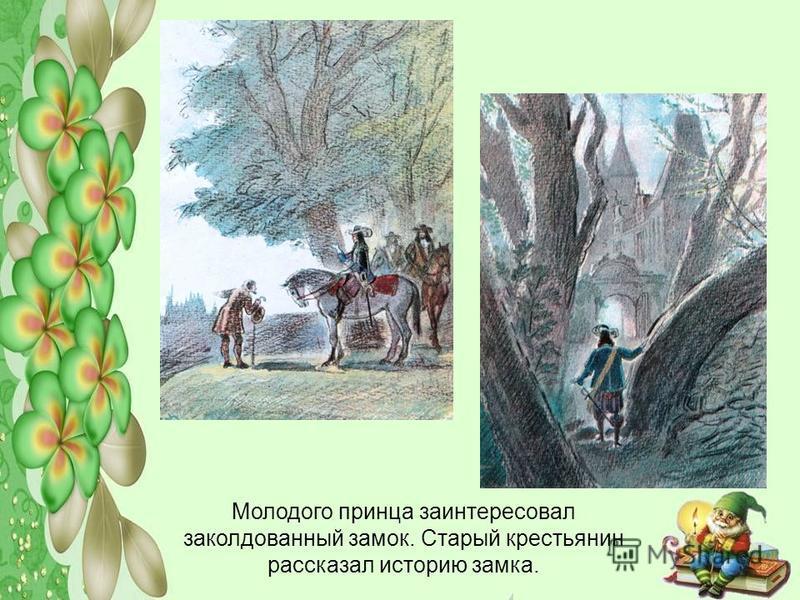 Молодого принца заинтересовал заколдованный замок. Старый крестьянин рассказал историю замка.
