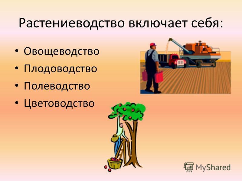 Растениеводетство включает себя: Овощеводетство Плодоводетство Полеводетство Цветоводетство