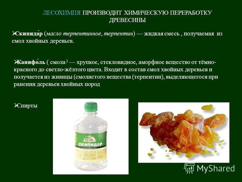 ЛЕСОХИМИЯ ПРОИЗВОДИТ ХИМИЧЕСКУЮ ПЕРЕРАБОТКУ ДРЕВЕСИНЫ Скипидар ( масло терпентинное, терпентин ) жидкая смесь, получаемая из смол хвойных деревьев. Канифоль ( смола ) хрупкое, стекловидное, аморфное вещество от тёмно - красного до светло - жёлтого цв