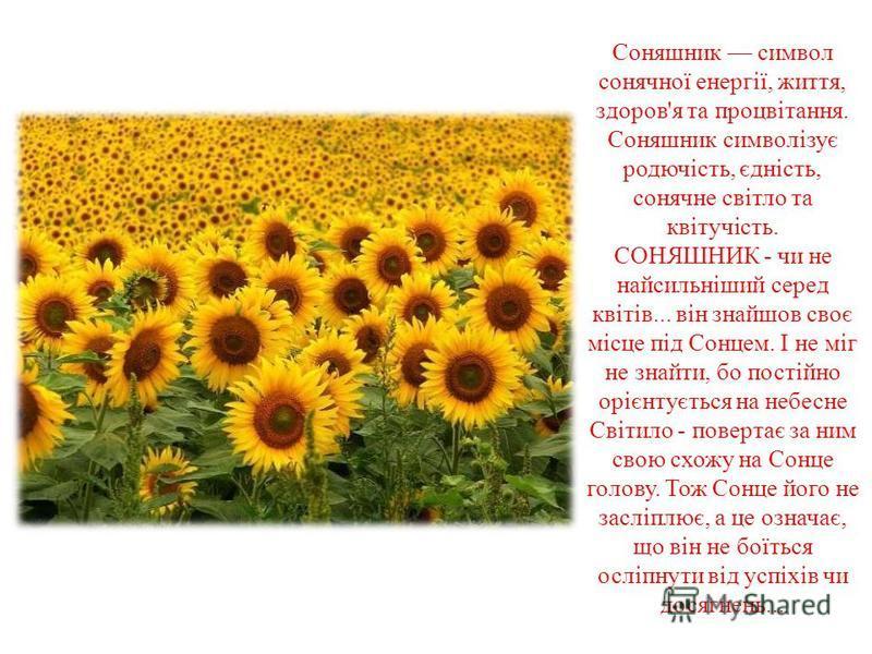 Соняшник символ сонячної енергії, життя, здоров'я та процвітання. Соняшник символізує родючість, єдність, сонячне світло та квітучість. СОНЯШНИК - чи не найсильніший серед квітів... він знайшов своє місце під Сонцем. І не міг не знайти, бо постійно о