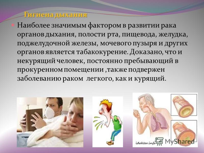 Гигиена дыхания Наиболее значимым фактором в развитии рака органов дыхания, полости рта, пищевода, желудка, поджелудочной железы, мочевого пузыря и других органов является табакокурение. Доказано, что и некурящий человек, постоянно пребывающий в прок