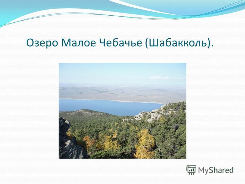 Озеро Малое Чебачье (Шабакколь).