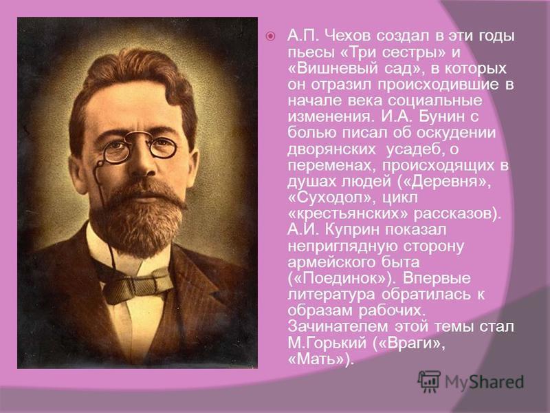 В традициях русской реалистической школы работал Л.Н. Толстой. Его письма- обращения к Николаю II, публицистические статьи проникнуты болью и тревогой за судьбу страны, стремление воздействовать на власть, преградить дорогу злу и защищать всех притес