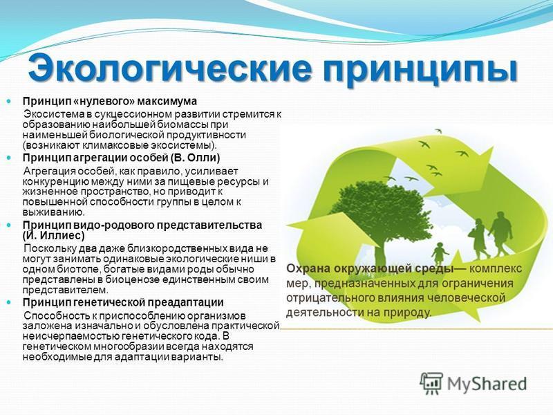 Экологические принципы Принцип «нулевого» максимума Экосистема в сукцессионном развитии стремится к образованию наибольшей биомассы при наименьшей биологической продуктивности (возникают климаксовые экосистемы). Принцип агрегации особей (В. Олли) Агр