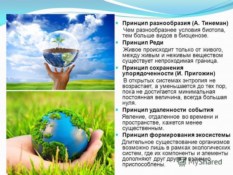 Принцип разнообразия (А. Тинеман) Чем разнообразнее условия биотопа, тем больше видов в биоценозе. Принцип Реди Живое происходит только от живого, между живым и неживым веществом существует непроходимая граница. Принцип сохранения упорядоченности (И.