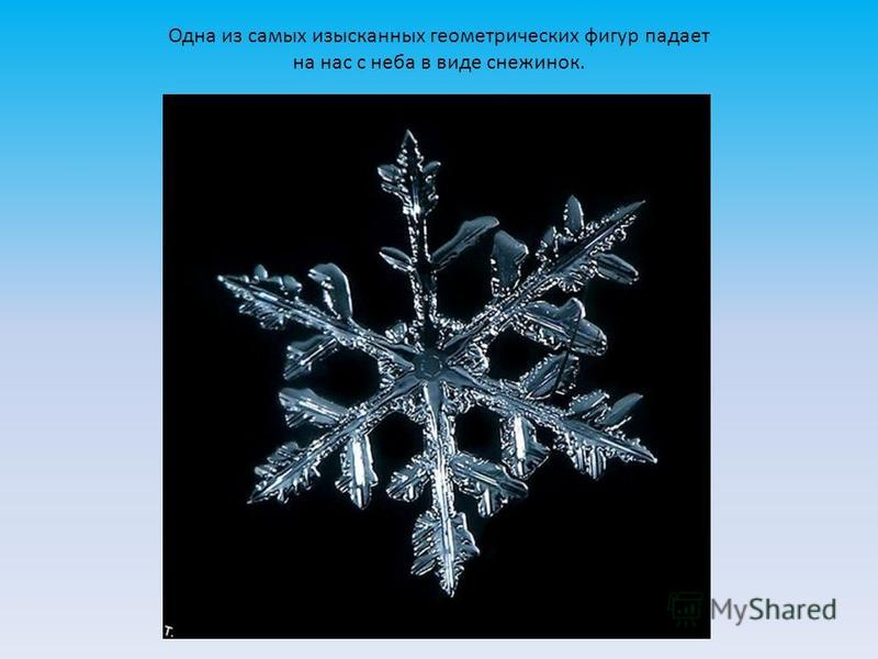 Одна из самых изысканных геометрических фигур падает на нас с неба в виде снежинок.