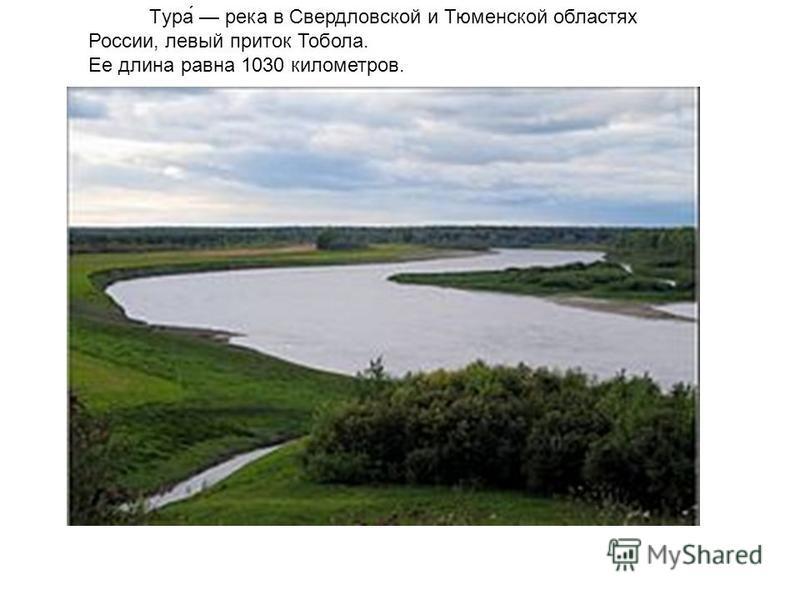 Тура́ река в Свердловской и Тюменской областях России, левый приток Тобола. Ee длина равна 1030 километров.