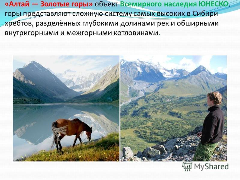 «Алтай Золотые горы» объект Всемирного наследия ЮНЕСКО, горы представляют сложную систему самых высоких в Сибири хребтов, разделённых глубокими долинами рек и обширными внутри горными и межгорными котловинами.