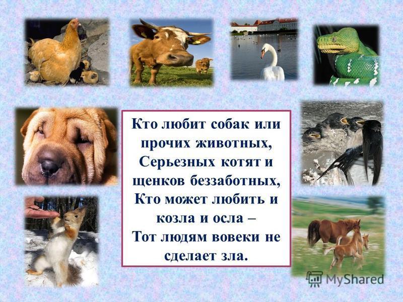 Добрый человек - это тот, кто любит людей и готов в трудную минуту прийти им на помощь. Добрый человек любит природу и бережет ее. Добрый человек любит птиц и зверей, помогает выжить им в зимнюю стужу. Добрый человек старается быть аккуратно одетым,