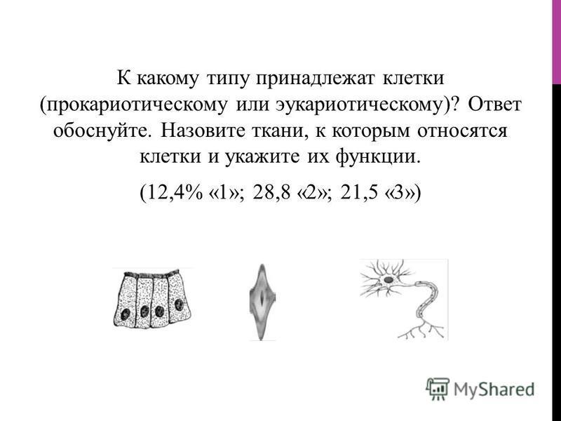 К какому типу принадлежат клетки (прокариотическому или эукариотическому)? Ответ обоснуйте. Назовите ткани, к которым относятся клетки и укажите их функции. (12,4% «1»; 28,8 «2»; 21,5 «3»)